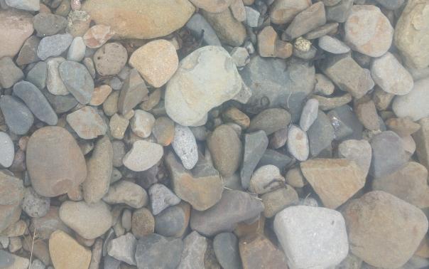 steinar